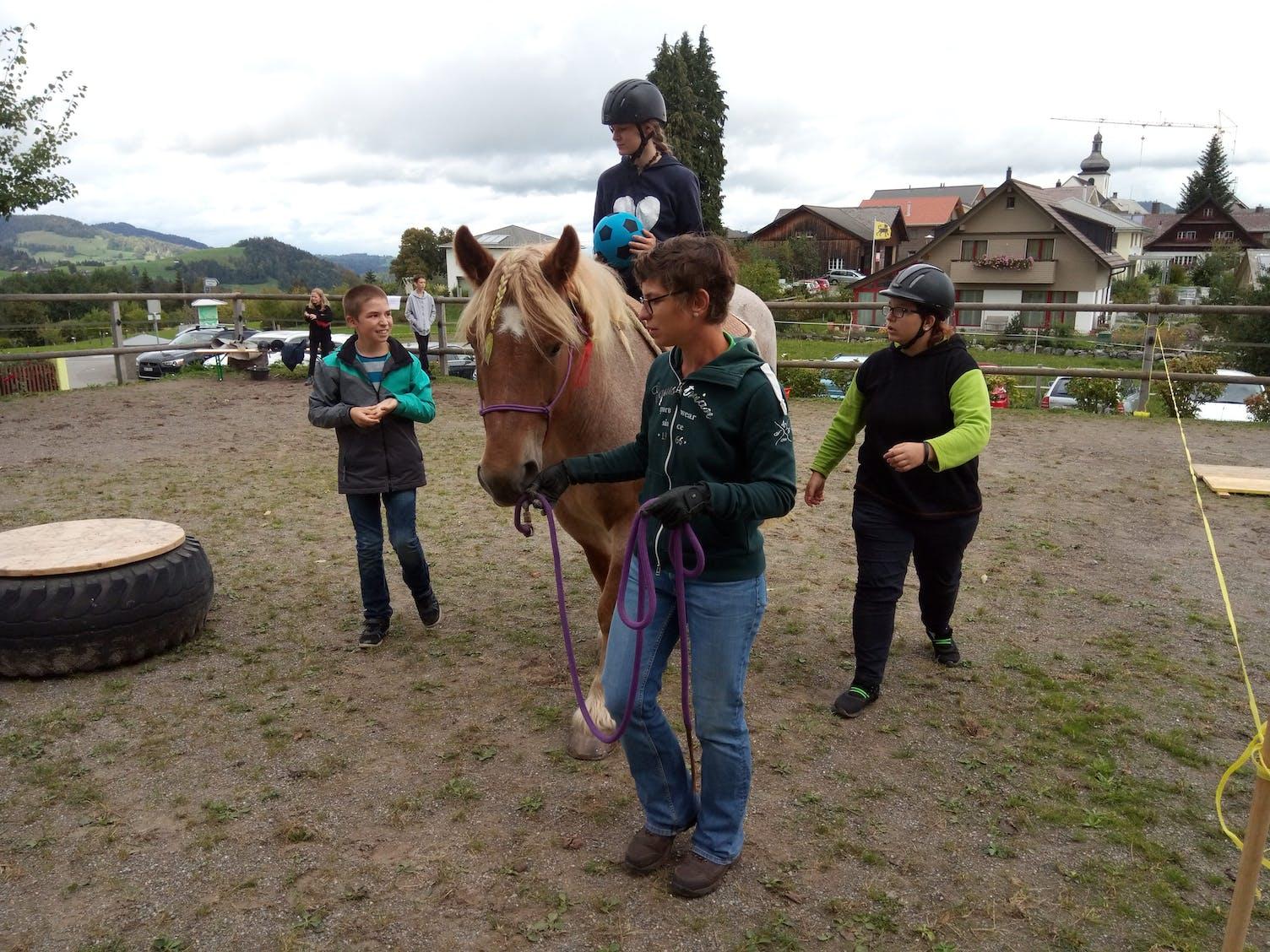 Therapie Pferd