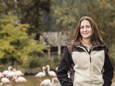 Karin Federer