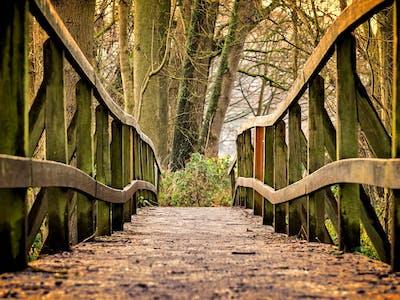 Wandern Brücke