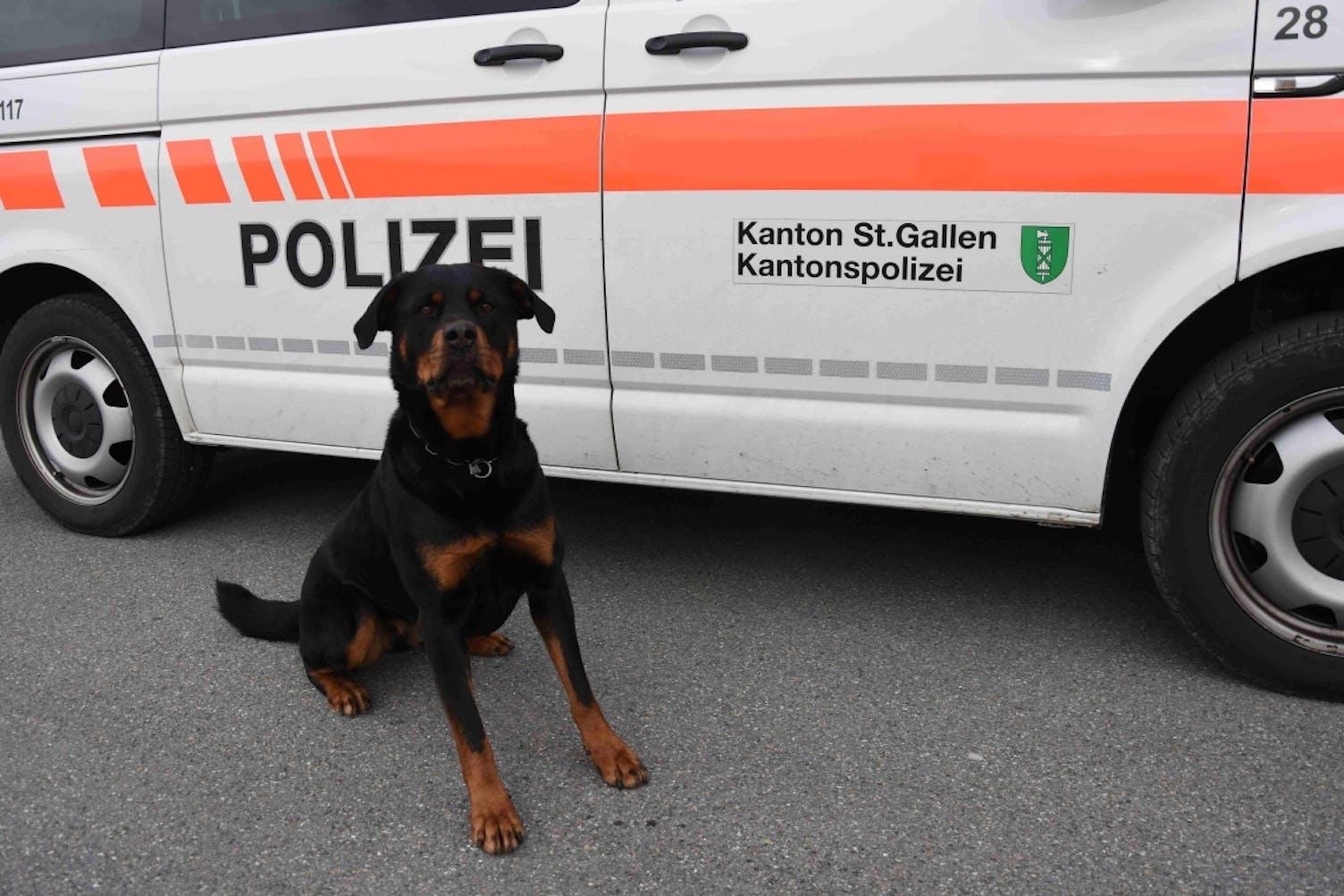 Polizeihund Symbol