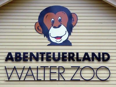Schimpi Walter Zoo