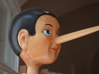 Lüge Lügner Leugner